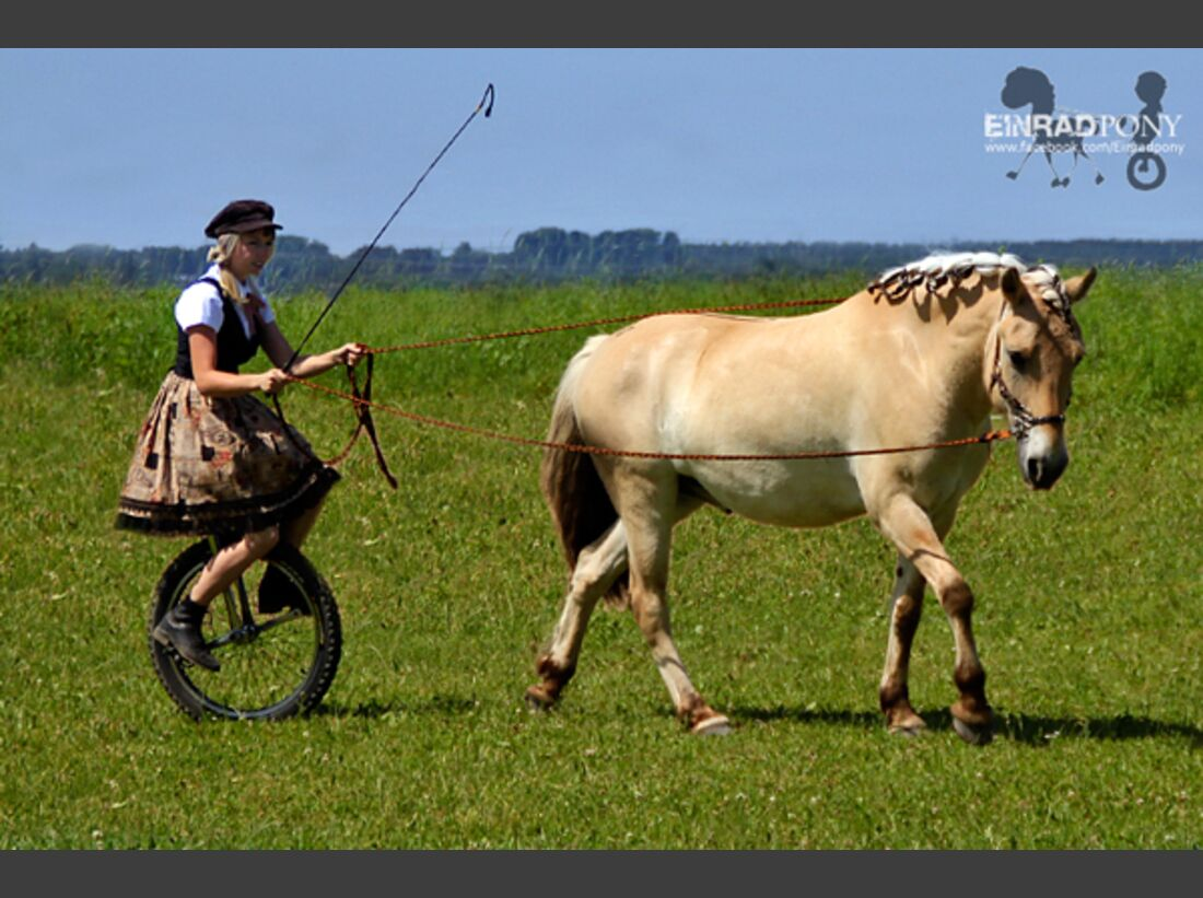 CAV Pony Leserfotos 23
