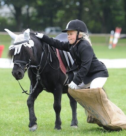 CAV Pony Schräges Pferdewelt Generationenderby