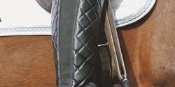 CAV Produktnews_Heft12_2009_Trends_Busse_Stiefel_STELLA-POLARIS-HIGH-RIDER (jpg)