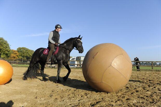 CAV Pushball Helene de Fremery