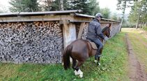 CAV Reiten im Winter Pferde Ausbildung Andreas Frey 4