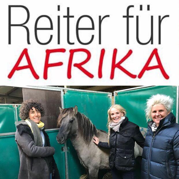 CAV Reiter für Afrika Konik