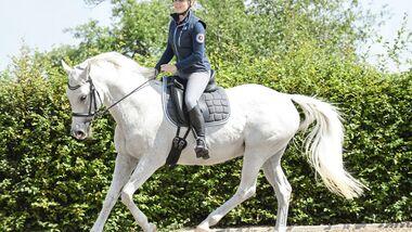 CAV Reiterin im Galopp auf Dressurplatz Reitbeteiligung