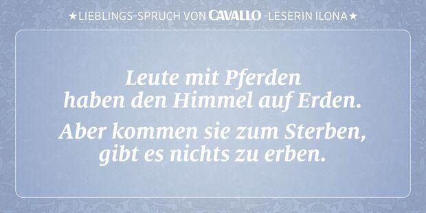 CAV Reitersprüche 16