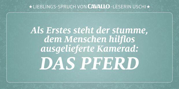 CAV Reitersprüche 18