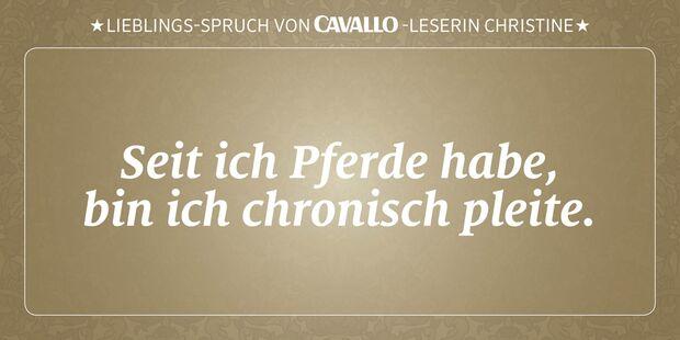 CAV Reitersprüche 24