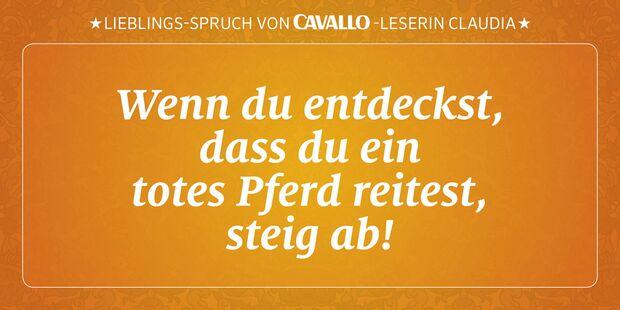 CAV Reitersprüche 28