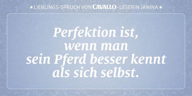 CAV Reitersprüche 30