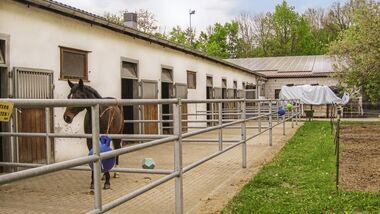 CAV Reitschul-Test in Coburg: Reitgemeinschaft Coburg-Rödental 3