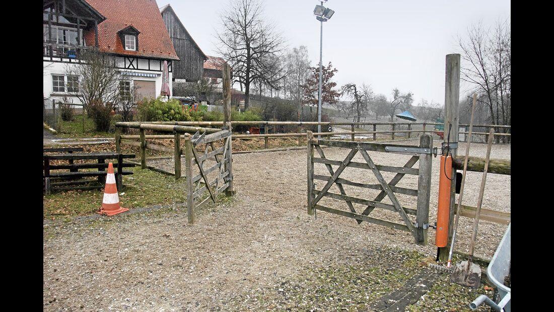 CAV_Reitschultest_0511_Kreiswald_1 (jpg)