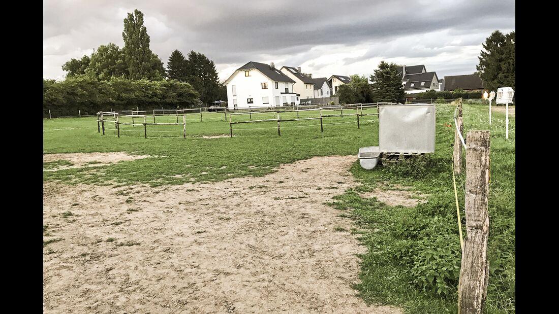 CAV Reitschultest Aachen Sonnenschein 2