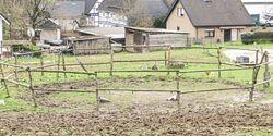 CAV Reitschultest Bergisches Land 12 Oaks Ranch 3