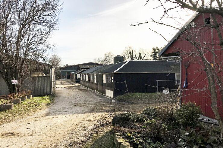 CAV Reitschultest Südpfalz Neustadt