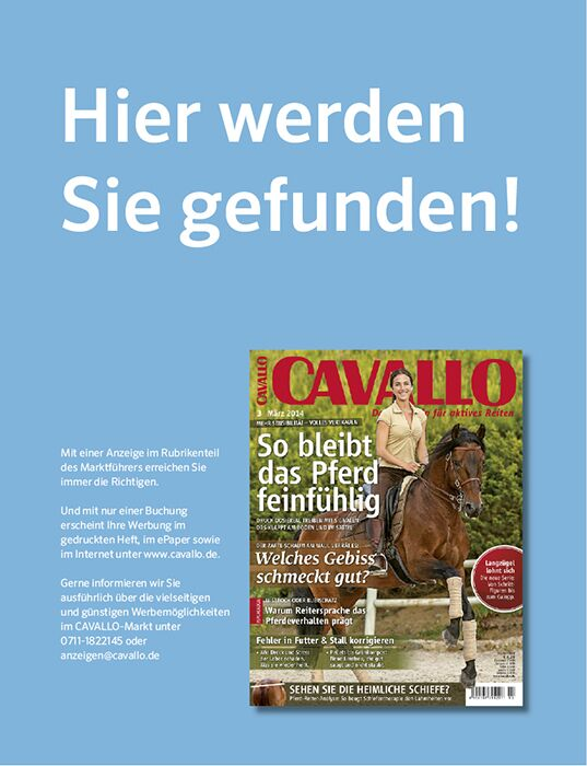 CAV Relaunch April Heft 2014