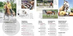 CAV Relaunch Heft September 2016 Inhalt