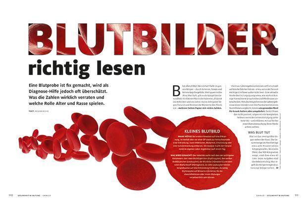CAV Relaunch Heft September 2016