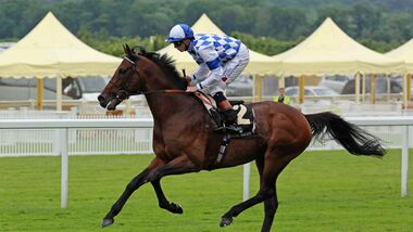 CAV Royal Ascot 1