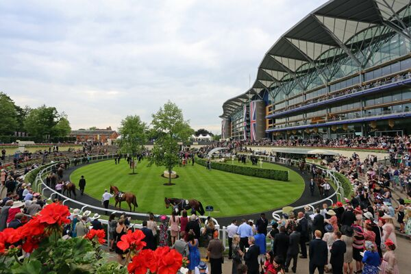 CAV Royal Ascot 20