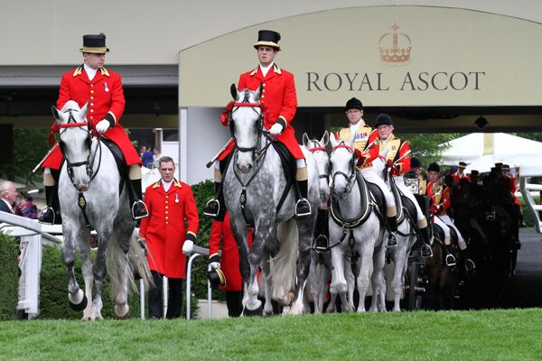 CAV Royal Ascot 21