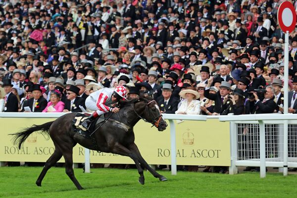 CAV Royal Ascot 24