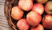 CAV Saftfutter Äpfel