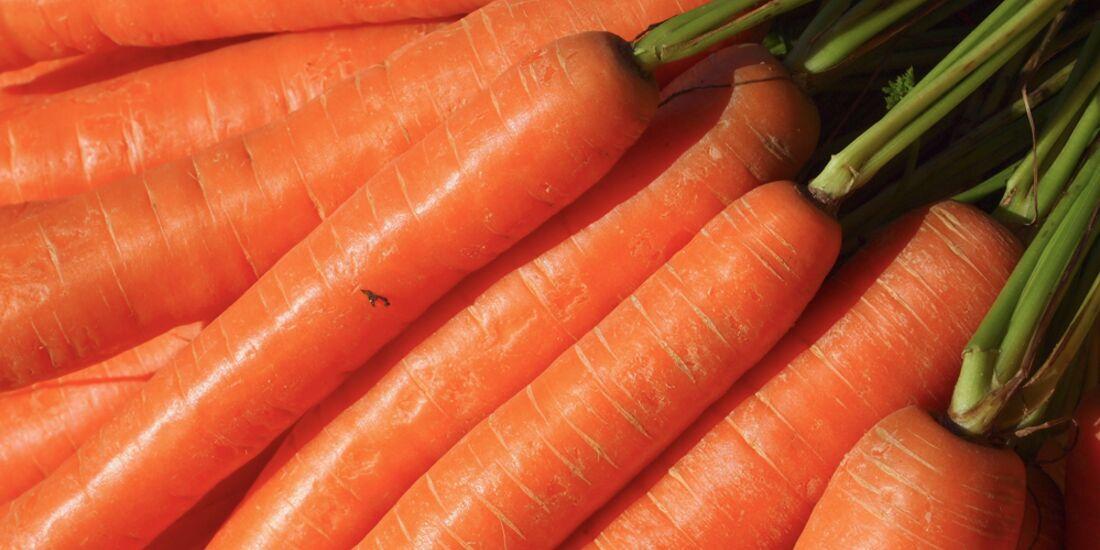 CAV Saftfutter Karotten Möhren plus 680