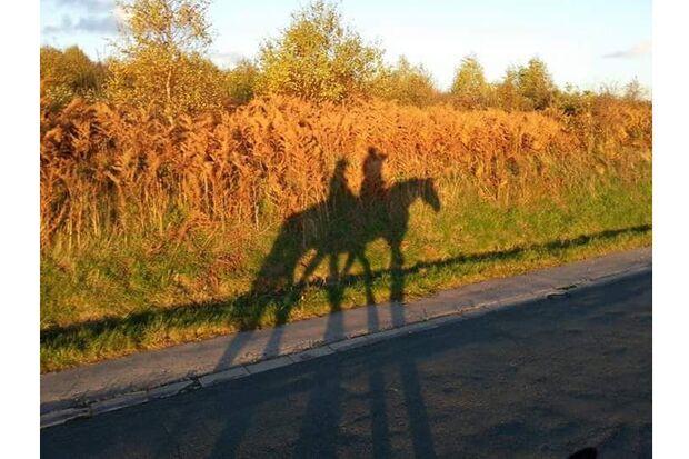 CAV Schattenfoto Leserfotos Katja Weidekamp