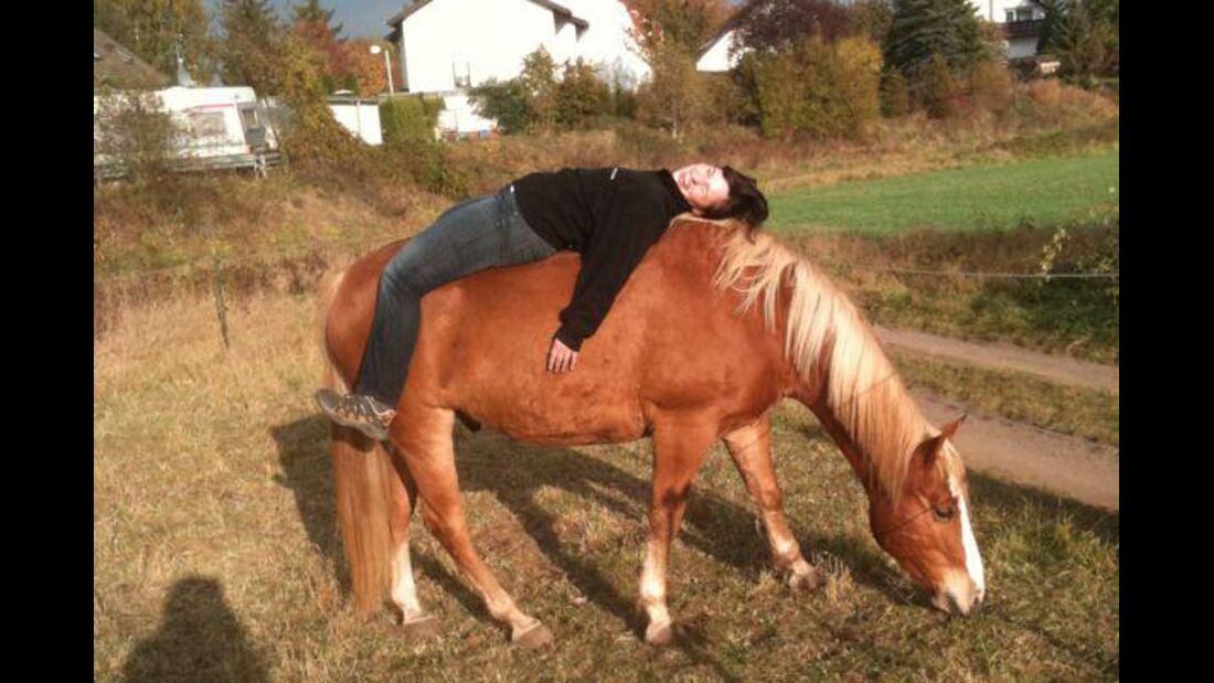 CAV Schräg Witzig Skurril aus der Pferdewelt Pferdefotos 7
