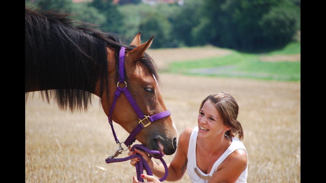 CAV Schräg Witzig Skurril aus der Pferdewelt Pferdefotos Scooby