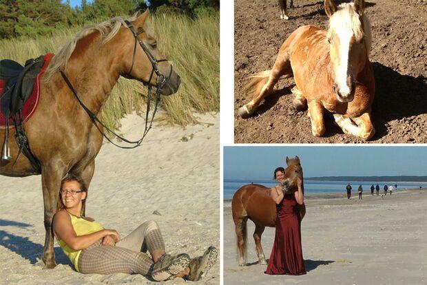 CAV Seelenpferd Kathrin Krüger
