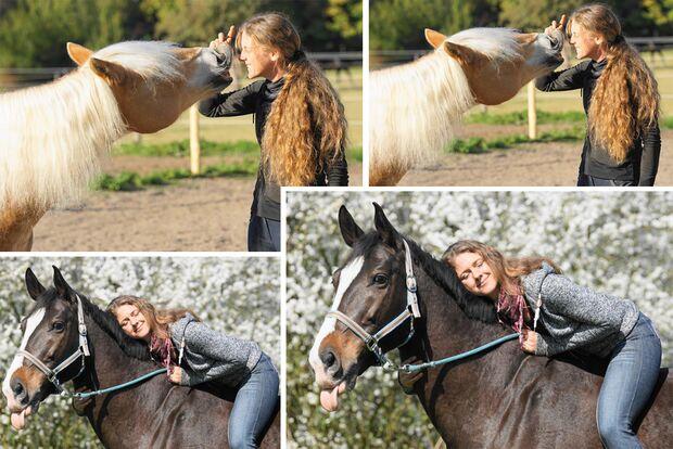 CAV Seelenpferd Tanja Marion Mayer