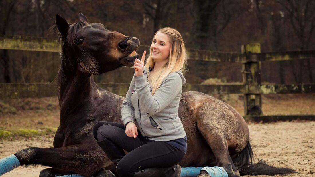 CAV Seelenpferd Weena Lier