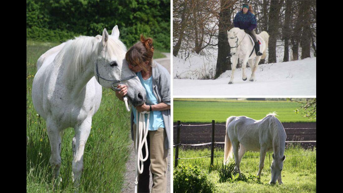 CAV Senioren Rentner Leserfotos - Ursula Daugschiess-Thumm