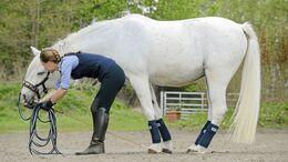 CAV Senkrücken Rücken Training