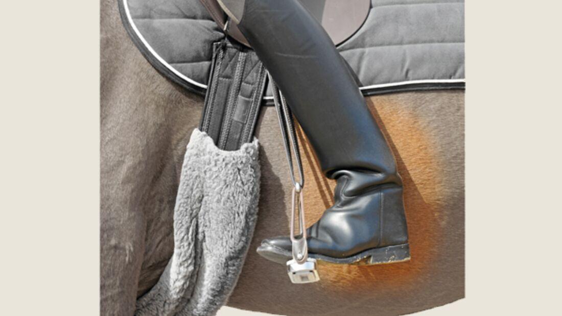 CAV Sinne Pferde 1