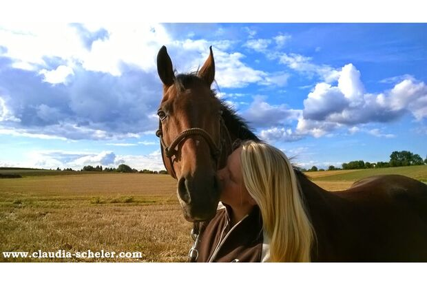 CAV Sommer mit Pferden 2014 - Claudia Scheler