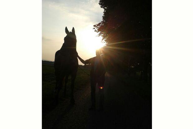 CAV Sommer mit Pferden 2014 - Isabell Kramer