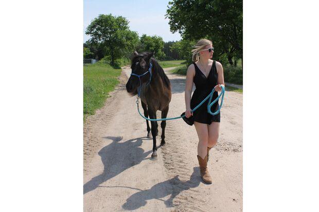 CAV Sommer mit Pferden 2014 - Julika Hempell