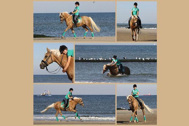 CAV Sommer mit Pferden 2014 - Jutta Backes