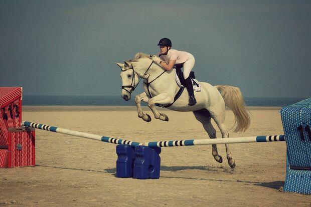 CAV-Sommer-mit-Pferden-2014-Kira-Jasperneite
