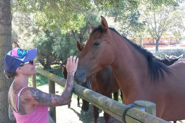 CAV Sommer mit Pferden 2014 - Rebecca Henkst