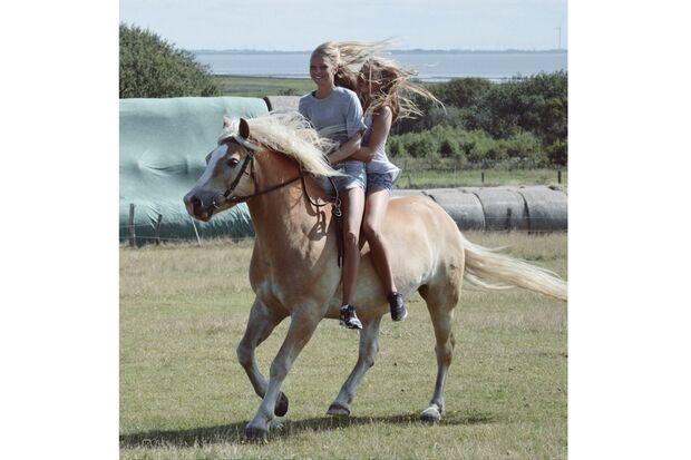 CAV Sommer mit Pferden Fiona Schulz