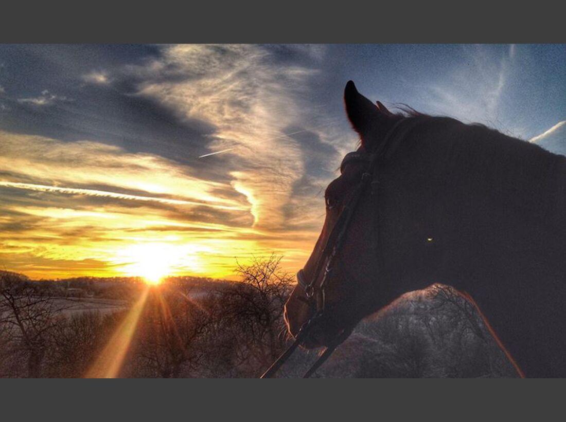 CAV Sonnenuntergang Lisa Mauermann