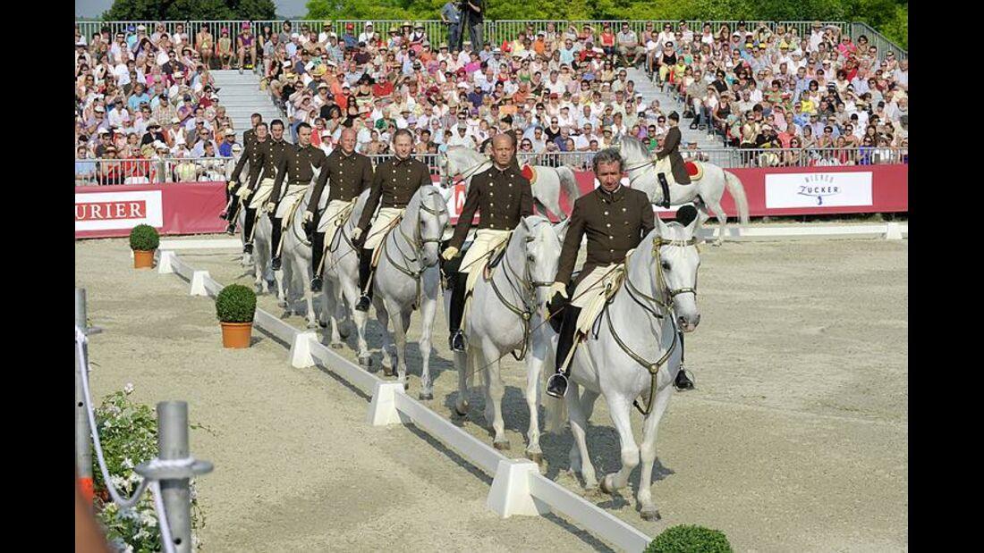 CAV Spanische Hofreitschule Wien Heldenberg 01