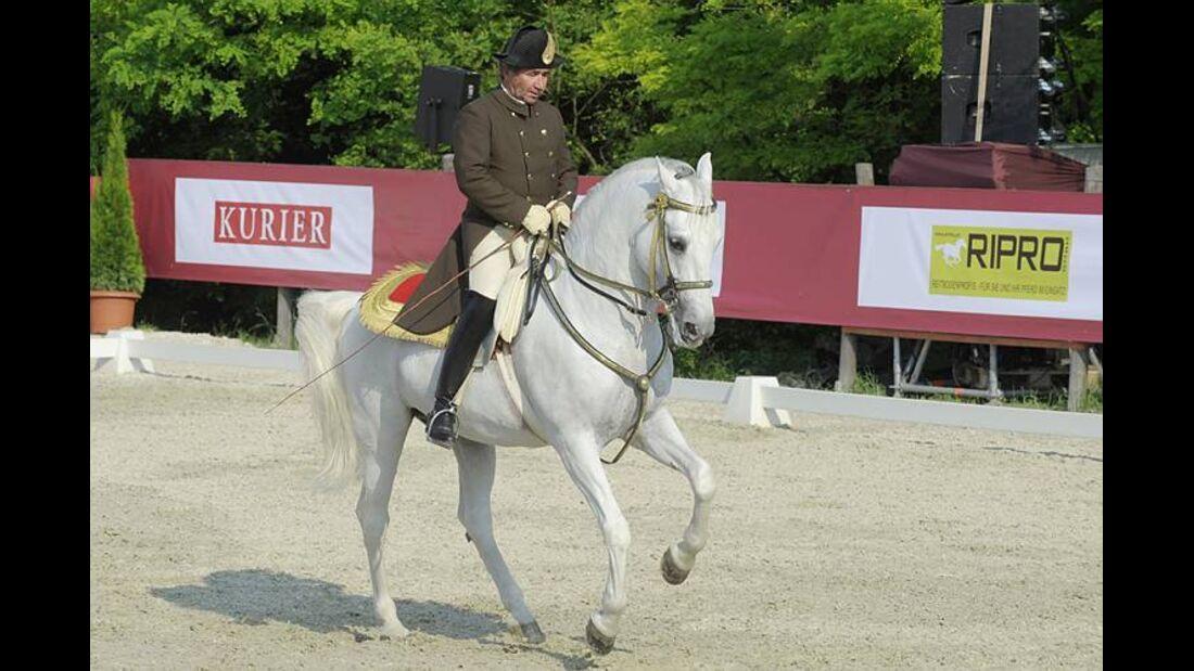 CAV Spanische Hofreitschule Wien Heldenberg 09