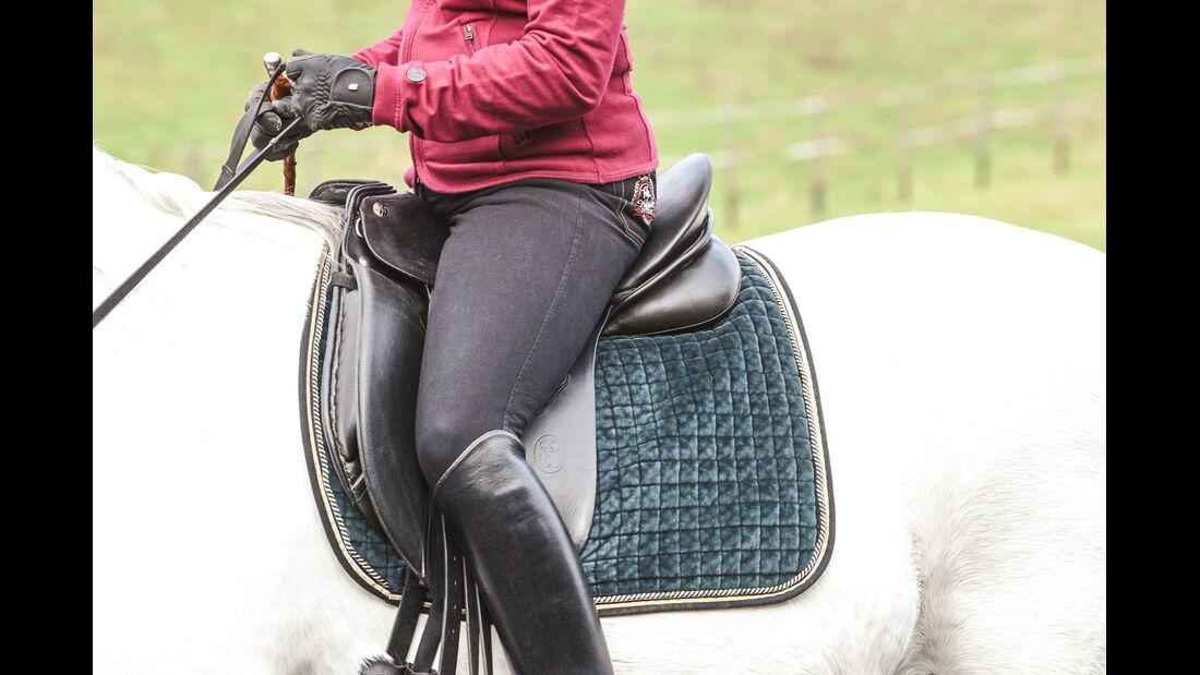 CAV Spanischer Schritt Reiterhilfen