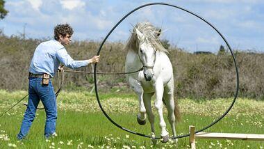 CAV Spielen mit dem Pferd Ring 3