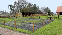 CAV Stall Scout 06_2014 Hengsthof am Wümmegrund 5