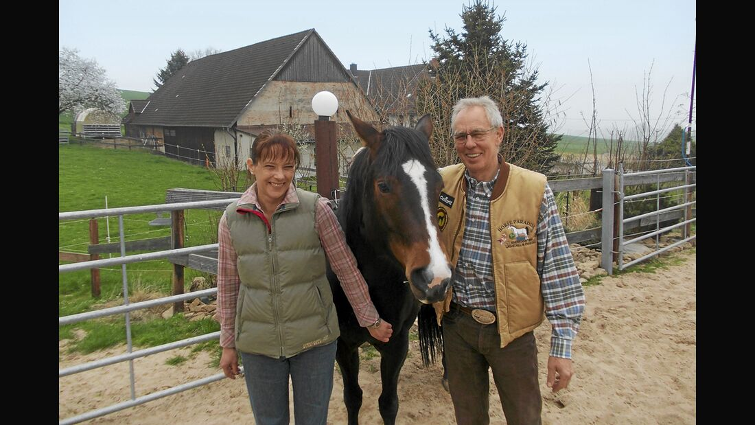 CAV Stall Scout 07_2014 Horse Paradise Andrea Rehberg und Ralf Krupski 1