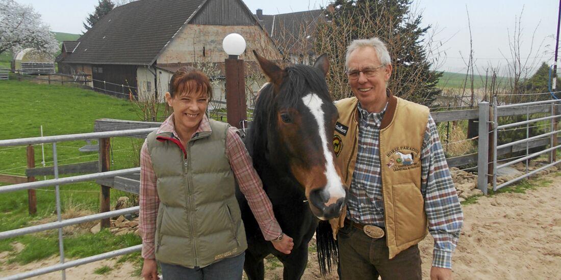 CAV Stall Scout 07_2014 Horse Paradise Andrea Rehberg und Ralf Krupski 1
